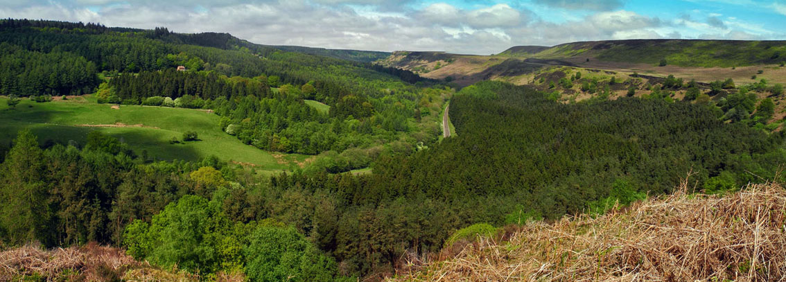 Panoramic view of Newtondale from Skelton Tower, NYM/Photo � Arnold Underwood,29th May 2016