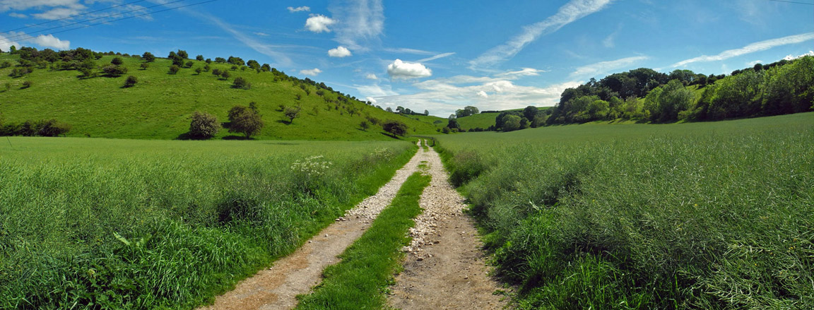 Yorkshire Wolds Way in Thixendale, North Yorkshire/Photo © Arnold Underwood, June 4th 2017
