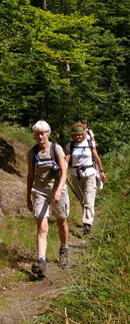 Heading back to Keswick through Brunholme Woods/from a photo by Arnold Underwood/8th Aug 2008