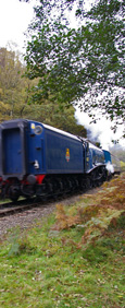 Sir Nigel Gresley rumbles down from Levisham/from a photo by Arnold Underwood, Oct 2009
