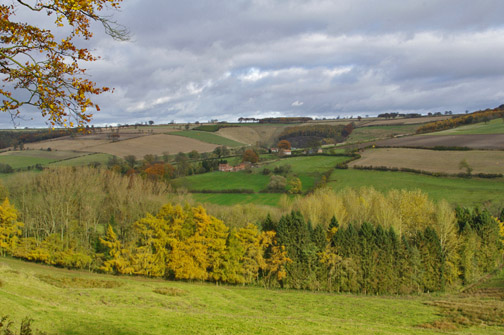 View across Painsthorpe/Photo by Arnold Underwood/Nov 2012