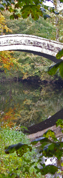 New Bridge reflected in the waters of the River Nidd/from a photo by Arnold Underwood/Oct 2007