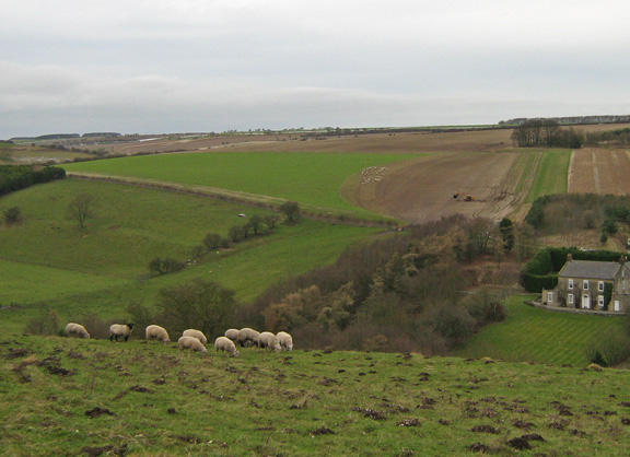 View across the Wolds from Paradise Cottages /photo by Arnold Underwood,Feb 2008