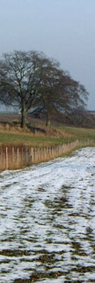 A light snowfall on the Wolds/from a photo by Arnold Underwood